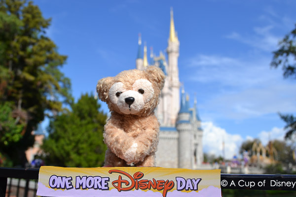 Duffy by the castle in the Magic Kingdom
