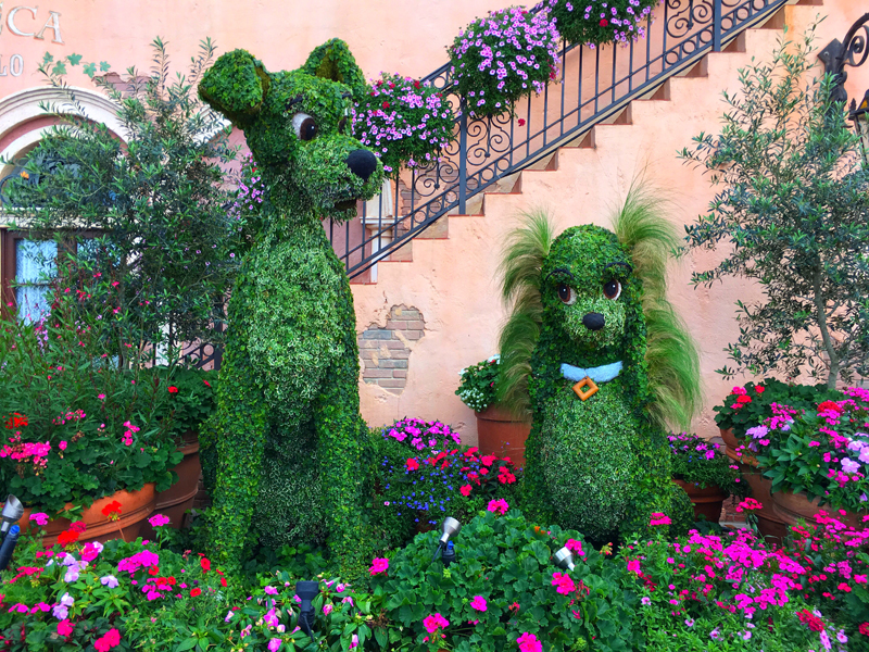 Epcot International Flower and Garden Festival Lady and the Tramp Topiary