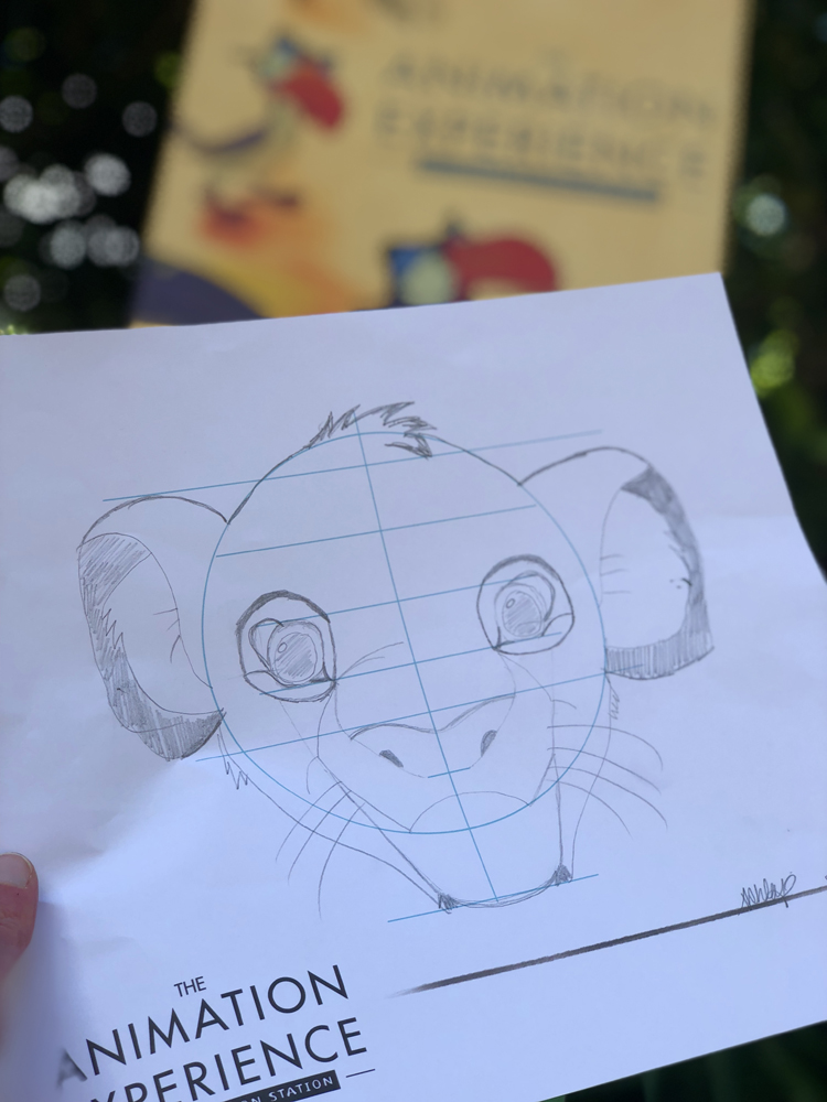 The Lion King Animation Experience Simba Animal Kingdom