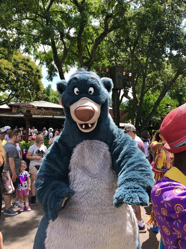 The Lion King Hakuna Matata Time Dance Party Baloo