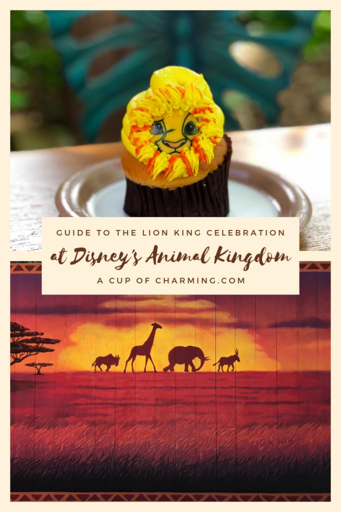 The Lion King Celebration at Disney's Animal Kingdom